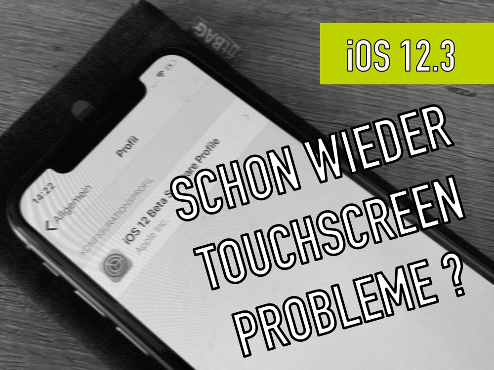 iOS 12.3 (Beta) Touchscreen Probleme bei gewechselten iPhone Displays ?